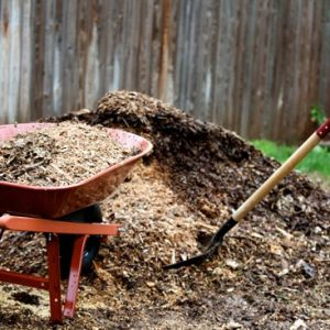 Mulch and Permaculture